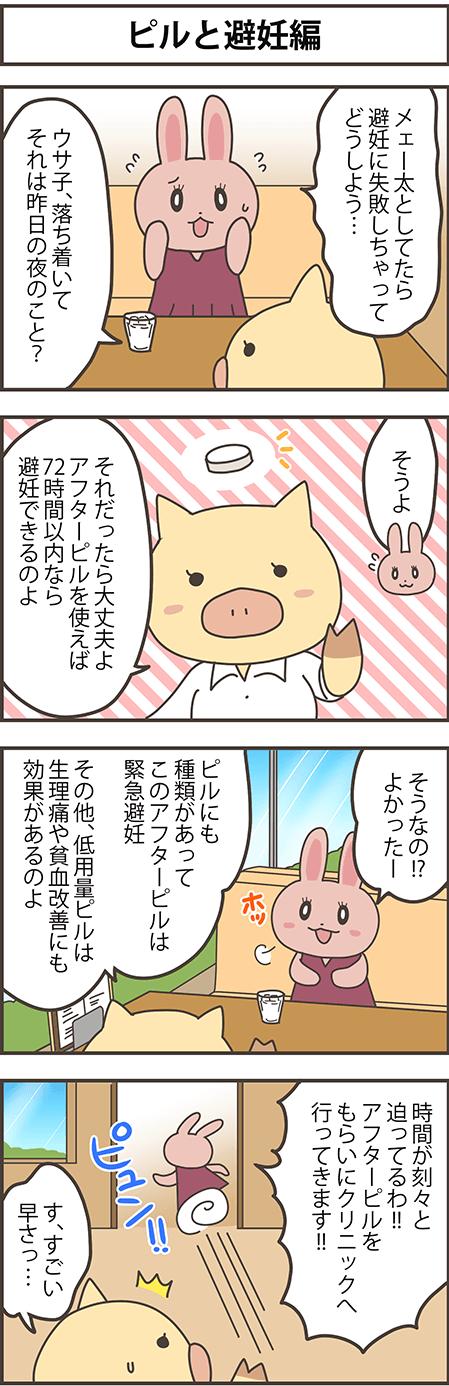ピルと避妊編